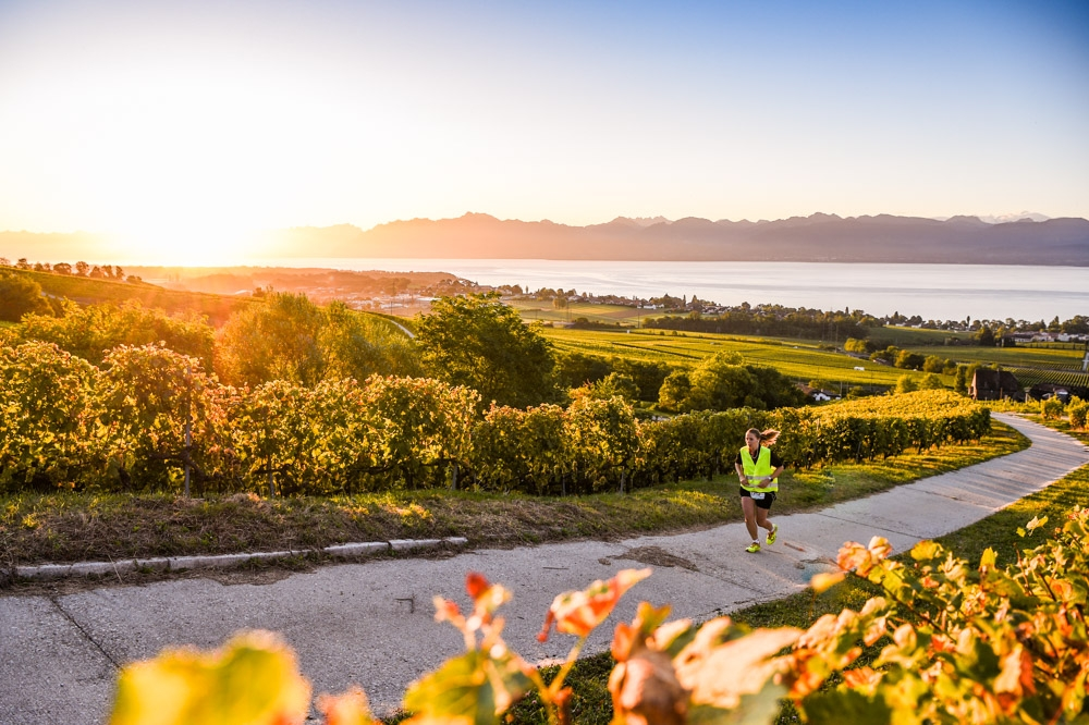 Run Mate Léman, course à pied, run, running, soleil, vignes, suisse